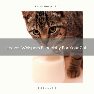 Leaves Whispers Especially For Your Cats