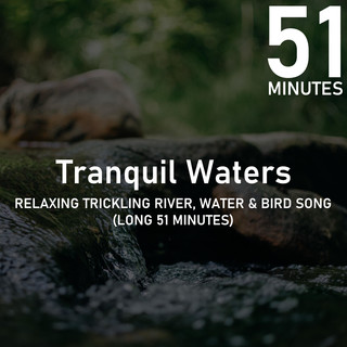 Relaxing Trickling River Water & Bird Song (Long 51 Minutes)