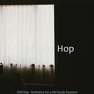Chill Hop - Ambiance For 3 AM Study Sessions