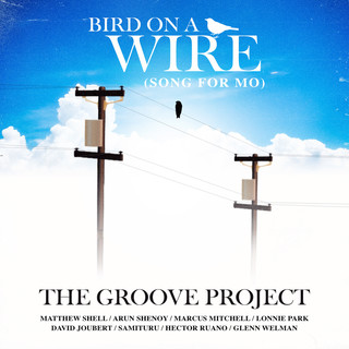 Bird On A Wire (Song For Mo)
