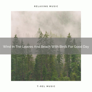 Wind In The Leaves And Beach With Birds For Good Day