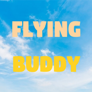 Flying Buddy