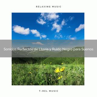 Sonidos Perfectos De Lluvia Y Ruido Negro Para Suenos