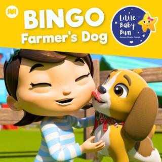 Bingo (Farmer's Dog)