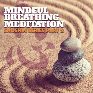 Mindful Breathing Meditation - Shoshin Series Pt. 2