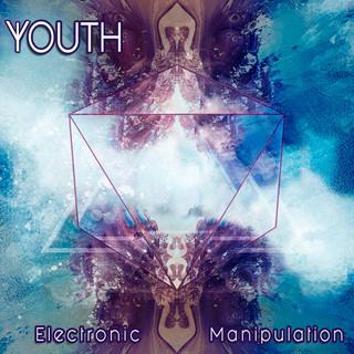 Electronic Manipulation