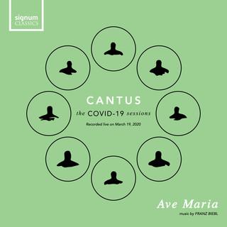 Ave Maria (Live)