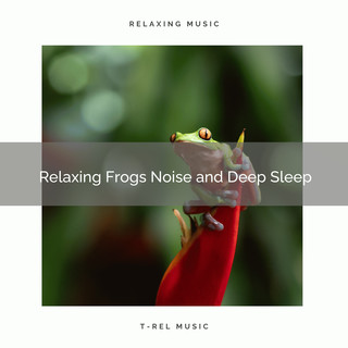 2020 Best:Relaxing Frogs Noise And Deep Sleep