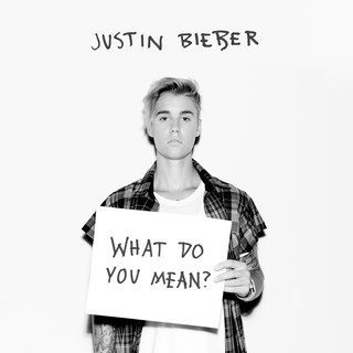 What Do You Mean ?