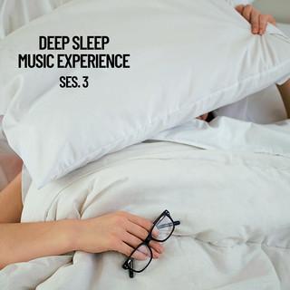 Deep Sleep Music Experience, Session 3