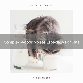 Complex Woods Noises Especially For Cats