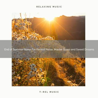 End Of Summer Noise For Perfect Relax, Master Sleep And Sweet Dreams