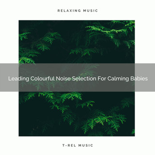 Leading Colourful Noise Selection For Calming Babies