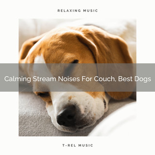 Calming Stream Noises For Couch, Best Dogs