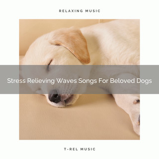 Stress Relieving Waves Songs For Beloved Dogs