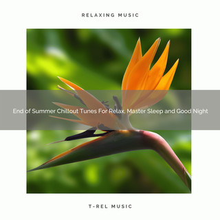 End Of Summer Chillout Tunes For Relax, Master Sleep And Good Night