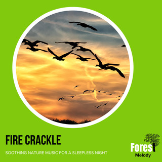 Fire Crackle - Soothing Nature Music For A Sleepless Night