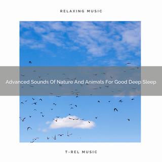 Advanced Sounds Of Nature And Animals For Good Deep Sleep