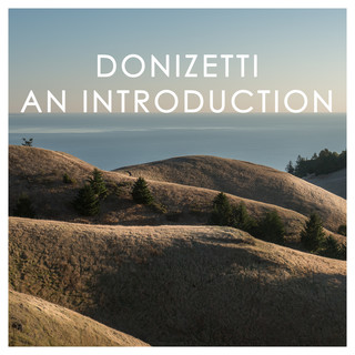 Donizetti:An Introduction