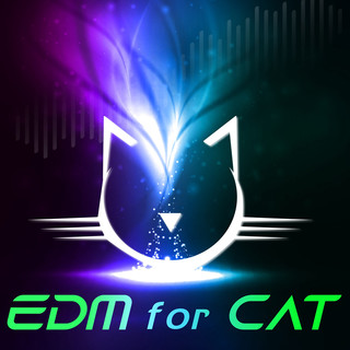 Edm for Cat