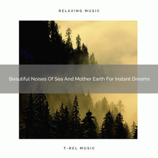 Beautiful Noises Of Sea And Mother Earth For Instant Dreams