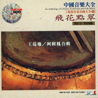 中國音樂大全《琵琶大全》第五輯