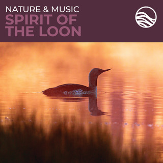 Nature & Music:Spirit Of The Loon