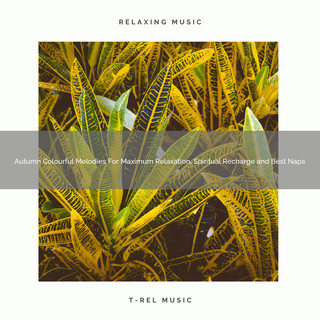Autumn Colourful Melodies For Maximum Relaxation, Spiritual Recharge And Best Naps