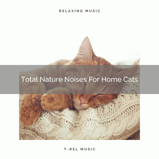 Total Nature Noises For Home Cats