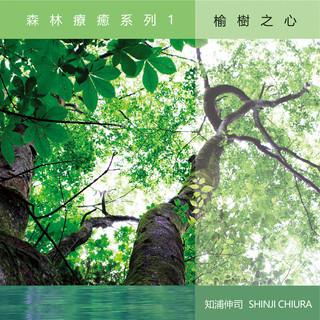 森林療癒系列1 - 榆樹之心