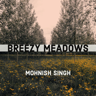 Breezy Meadows Remastered