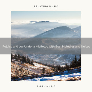 Rejoice And Joy Under A Mistletoe With Best Melodies And Noises
