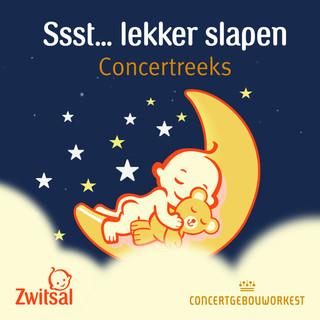 Ssst... Lekker Slapen:Concertreeks
