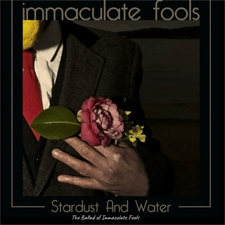 Stardust And Water The Ballad Of Immaculate Fools
