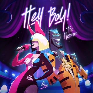 Hey Boy (The Remixes)
