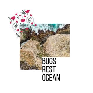 Bugs Rest Ocean