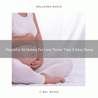 Peaceful All Noises For Less Tense Take It Easy Sleep