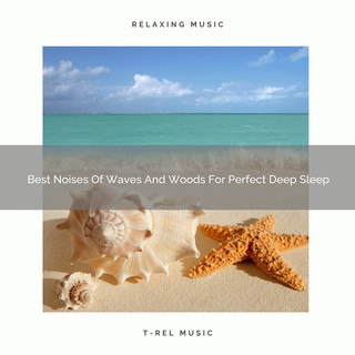 Best Noises Of Waves And Woods For Perfect Deep Sleep