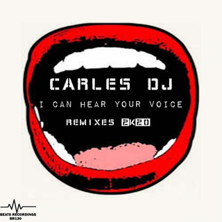 I Can Hear Your Voice Remixes 2K20