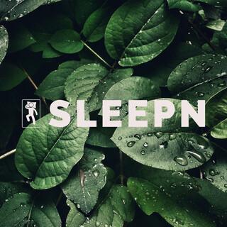 Nature Rain To Fall Asleep With