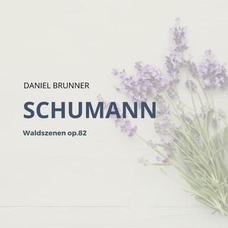 Schumann:Waldszenen Op.82