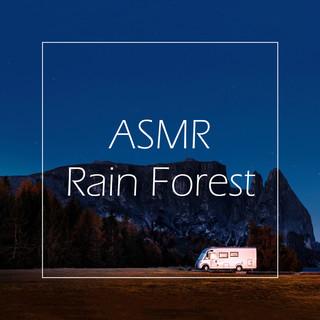 聽見大自然雨林 / ASMR大腦按摩 (ASMR Rain Forest)