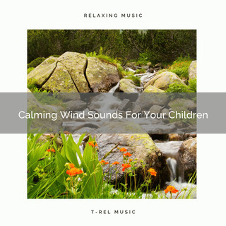 Calming Wind Sounds For Your Children
