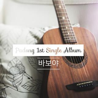 傻瓜 / 韓國歌手 파동