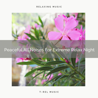 Peaceful All Noises For Extreme Relax Night