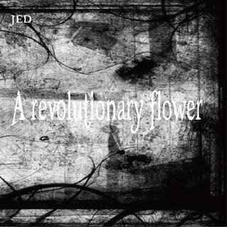 A revolutionary flower