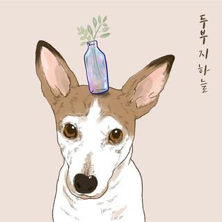 豆腐 / 民謠創作歌手.지하늘