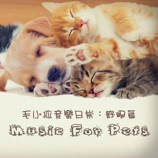 毛小孩音樂日常:舒眠篇 (Music For Pets)