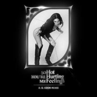 So Hot You're Hurting My Feelings (A.G. Cook Remix)