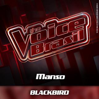 Blackbird (Ao Vivo)